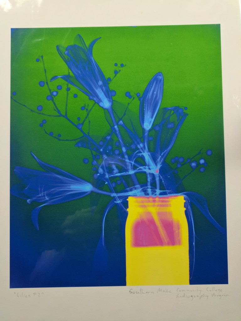 Art Photo Of Plant By SMCC Radiology Students